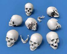 Royal Model 54mm 1/32 Assorted Skulls & Detached Jawbones (8 Skulls & 4 Jb.) 912