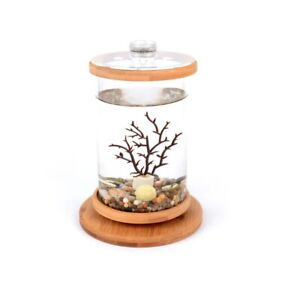 Round Small Aquarium Glass Fish Tank Mini Ornamental Rotatable Clear Bowls 1pc