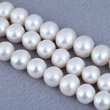 Pearl Round Craft Beads