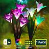 Solar Lily Flower LED Light Waterproof Outdoor Garden Yard Lawn Landscape Lamp-