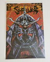 Teenage Mutant Ninja Turtles Shredder In Hell #4 Kevin Eastman Comic Variant IDW