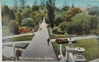 .SYDNEY , BOTANICAL GARDENS NEW SOUTH WALES EARLY 1900'S POSTCARD.