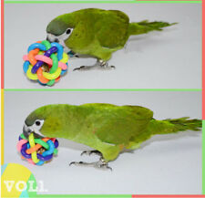 2pcs/lot Colorful Parrot Toy With Bell Toys Ball Toy For African Grey Bird D413