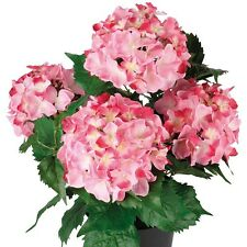 Pink Artificial Fake Indoors or Outdoors Garden Hydrangea Flower Plant