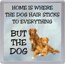 "Nova Scotia Duck Tolling Retriever Dog Coaster ""Home is Where  ..."" by Starprint"