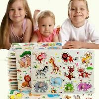 Steckpuzzle Holz Setzpuzzle Einlegepuzzle Kinderpuzzle Jigsaw Kinder D7K4