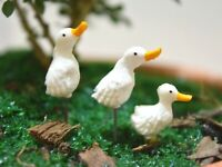 3pcs. Tiny white Duck - Miniature Dollhouse FAIRY GARDEN Accessories