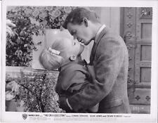 """Connie Stevens & Dean Jones in """" Two on a Guillotine"""" 1965 Vintage Movie Still"""