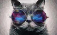 Encadrée Imprimer géométrique Chat portant Funky lunettes de soleil (Abstract Animal Photo)