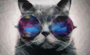 Framed Print - Geometric Cat Wearing Funky Sunglasses (Abstract Animal Picture)