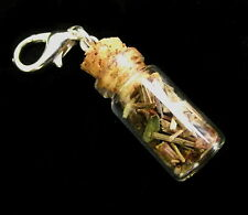 Vampire Diaries Inspired Vervain Filled Miniature Bottle Clip on Charm