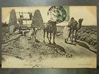cpa tunisie puits arabe attelage chameau