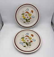 Four Seasons Stoneware Early Summer Dinner Plates Set Of 2 Vintage Made In Japan