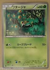 Snivy ツタージャ 002/093 Pokemon EX Battle Boost JAPANESE