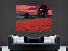 Feld Blumen Mohnblumen Sonnenuntergang Bäume Kunst Bild Groß Wandbild Poster Bild