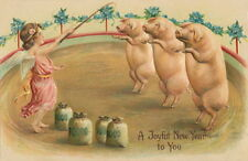 New Year~Performing Pigs in Circus Ring~Money Bags~Cherub~New Lg Note Cards