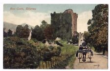Killarney Ireland ROSS CASTLE CO. KERRY EIRE HORSE AND CART OLD POSTCARD