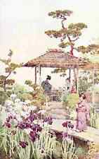 A4 Photo Du Cane Ella 1874 1943 An iris garden Flowers & Gardens of Japan 1908 P