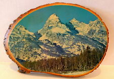 Tetons Pine Wood Decoupage Picture Wyoming Yellowstone