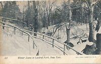 NEW YORK CITY – Central Park Winter Scene – udb (pre 1908)