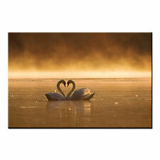 Framed Canvas Prints For Living Room Swan Lover Wall Art Canvas Prints Picture
