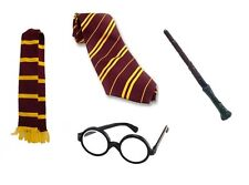 Costume Harry Set Hogwarts Sciarpa Occhiali Asta LIBRO SETTIMANA Potter mago