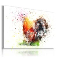 PAINTING DRAWING COCK BIRDS PRINT Canvas Wall Art  R78 MATAGA