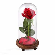 """""""Beauty Artificial Flowers and the Beast"""" Full Kit, Red Silk Rose and Led Light"""