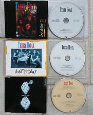 Terry hoax 3 x Maxi-CD Insanity & Hot heyday & Policy of Truth