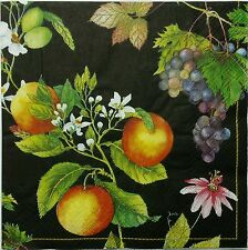 FRUITS FLORAL 2 single LUNCH SIZE  paper napkins for decoupage 3-ply