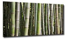 Leinwand Bild Abstrakt Bambus Wald Grün Ruhe Deko Warm