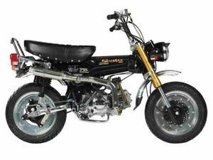 Skymax 125cc Pro , Euro 3, mit Tageszulassung