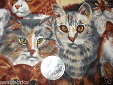 """2 yds of 45"""" cat kittens fabric multi colors and breeds faces sewing crafts---*"""