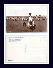 HUNGARY HORTOBAGY SHEPHERD AND DOGS ERDELYI REAL PHOTO POSTCARD CIRCA 1920