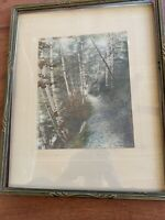 "Vintage David Davidson Hand Colored Photo "" A Riverside Pass"".  Birch Trees"