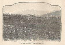 A1423 Monte Velino dal Fucino - Xilografia - Stampa Antica del 1895 - Engraving