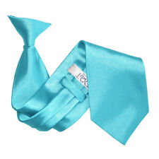DQT Satin Plain Solid Robin's Egg Blue Waiter Security Funeral Clip On Tie