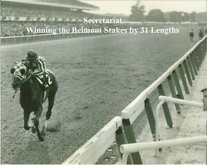 """1973 - SECRETARIAT winning the Belmont Stakes by """"31 Lengths"""" - 10"""" x 8"""""""