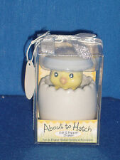 About to Hatch Ceramic Baby Easter Chick Salt Pepper Ceramic NIB