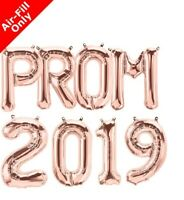"16"" PROM 2019 Party & Decoration Balloon Banner Kit Air Fill Only - rose"