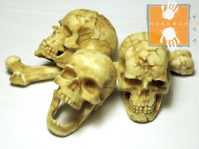 Hot Custom 1/6 Toys Skull Head Set with Movable Jaw ** Handmade item **