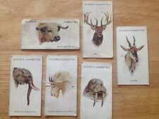 John Player Cigarette Cards - Wild Animals' Heads (incomplete, see details)