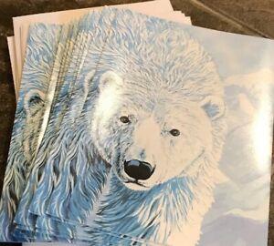 Vintage Polar Bear Cards Human-i-Tees Christmas Earth Day Rain Forest 90s D3