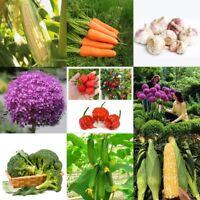 Heirloom Vegetable Garden Seeds Non Gmo / Hyrid Organic Survival Plants Bank