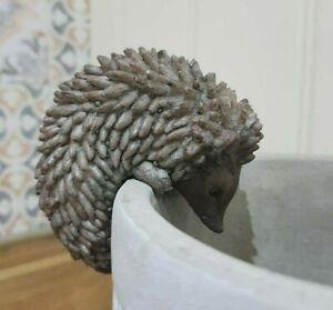 Hedgehog Pot Hanger Pot Buddie Vase Planter Or Flower Pot Wildlife Ornament