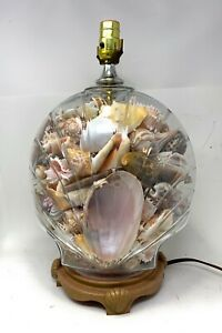 Seashell Filled Glass Table Lamp Clamshell Shape Clear Glass
