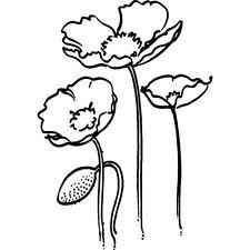 'Mohnblumen' Stempel (Unmontiert) (RS021222)