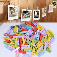 mini mollette colorate di legno per confezioni regalo,bomboniere e decorazionCRI