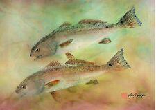 Gyotaku Fish Print – Redfish
