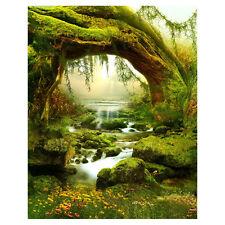 5X7FT Vinyl Backdrop Photography Prop Fairy Tale Scenic Photo Background J7K2